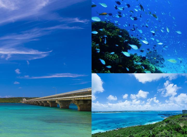 来間大橋、ダイビングで見える魚、展望台から見える風景
