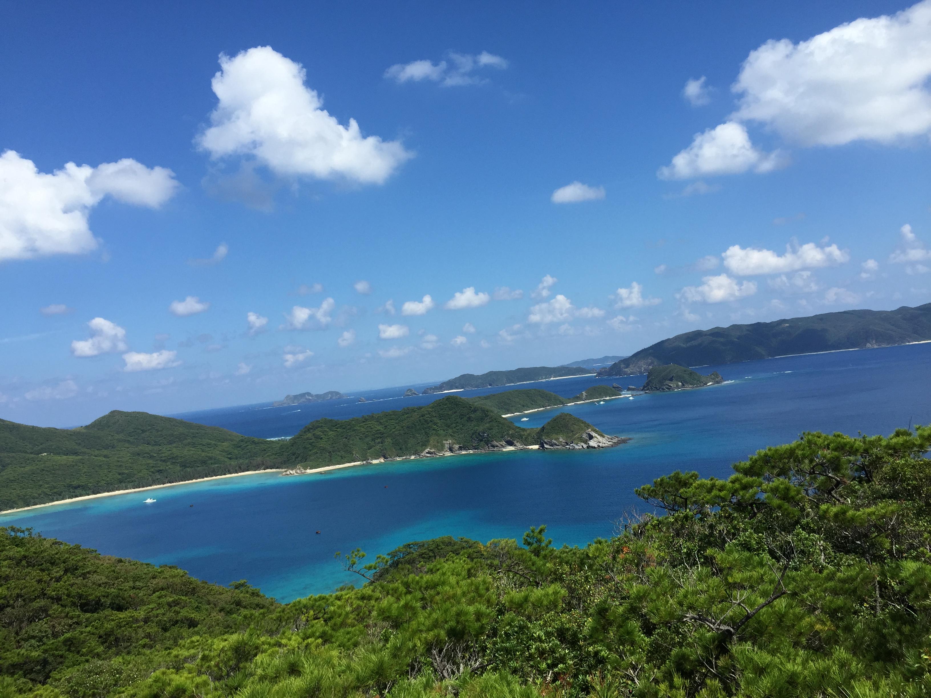 高月山から見える海、絶景