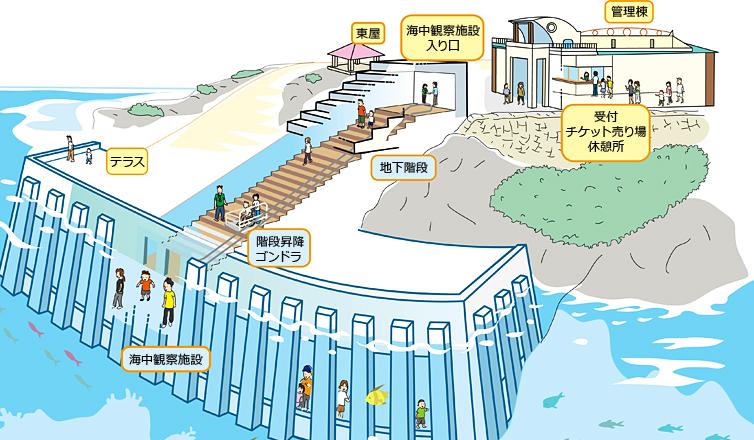 宮古島海中公園のイラスト
