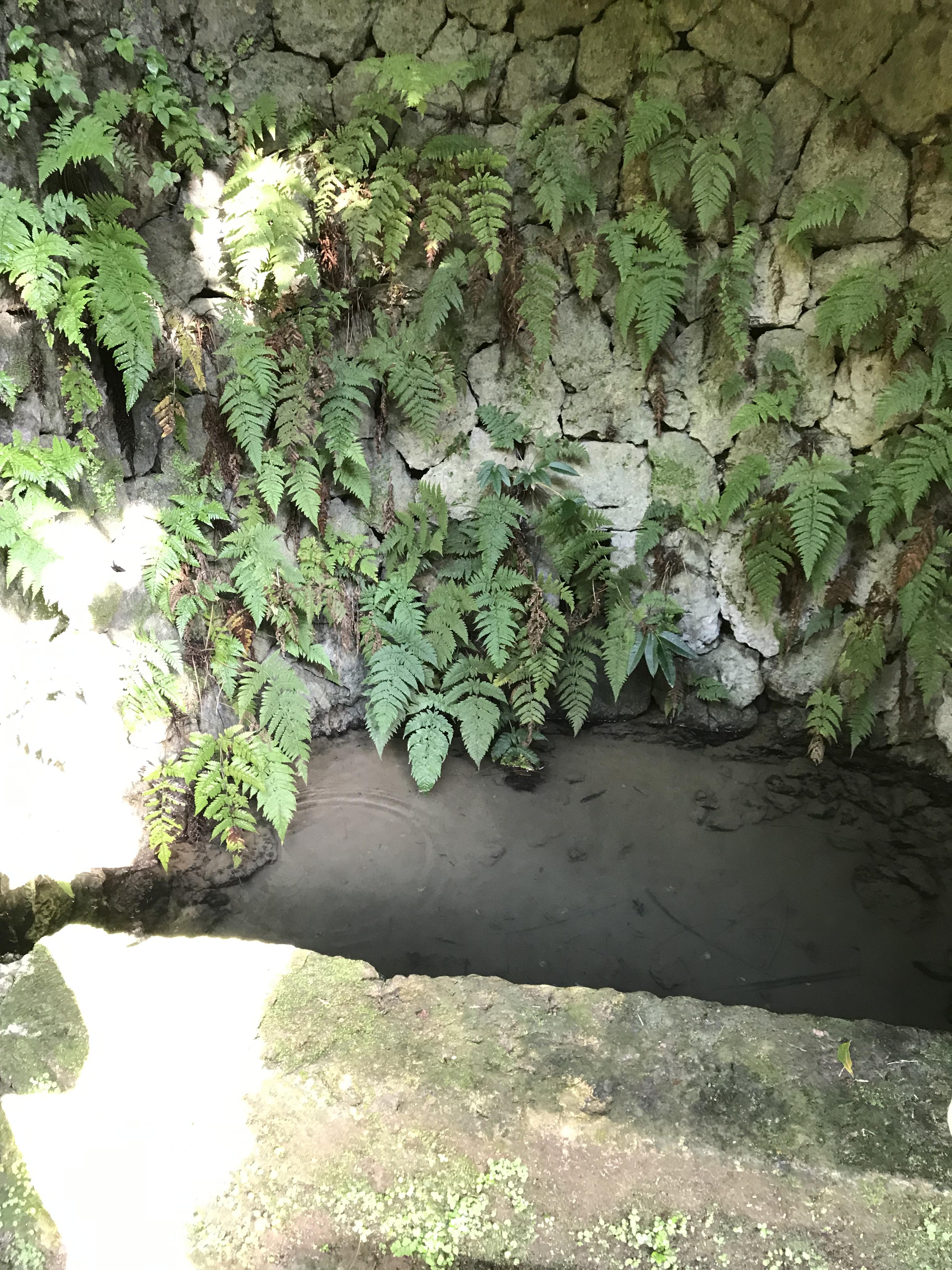 大井戸(ウフガー)