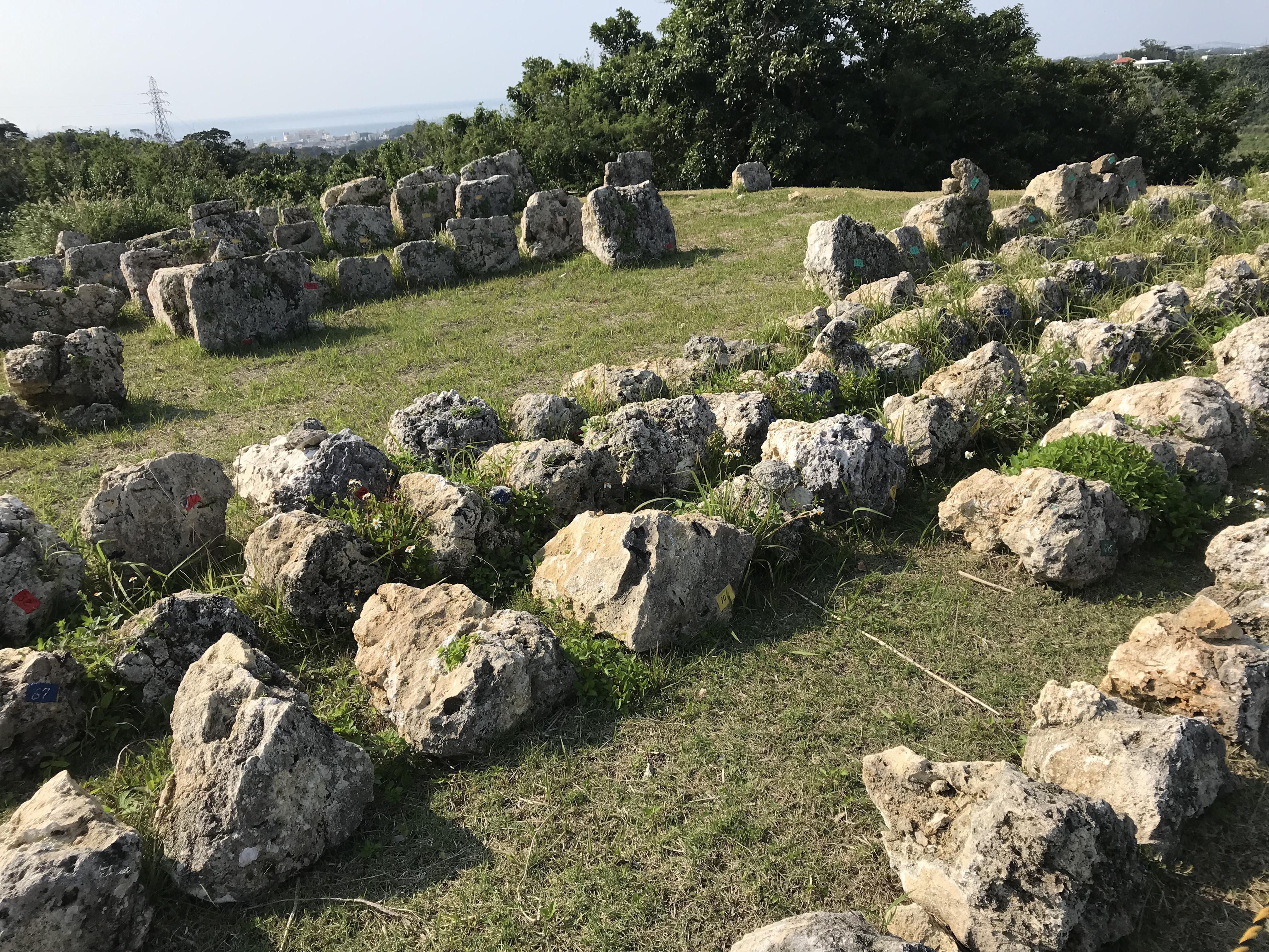 中城城跡の景観、石がたくさん置かれているが、理由は不明